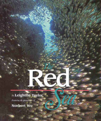 The Red Sea by Leighton Taylor