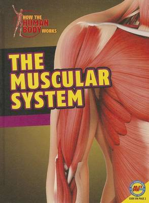 Muscular System by Simon Rose