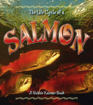 The Life Cycle of the Salmon by Kelley MacAuley