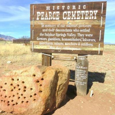 The Historic Pearce Cemetery by Carolyn N Gray