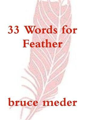 33 Words for Feather by bruce meder