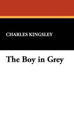 The Boy in Grey by Charles Kingsley image