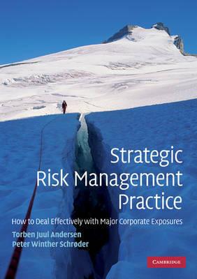 Strategic Risk Management Practice by Torben Juul Andersen