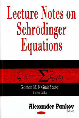 Lecture Notes on Schroedinger Equations image