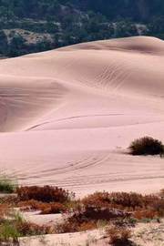 The Pink Sand Dunes in the Utah Desert by Unique Journal image