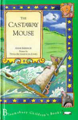 The Castaway Mouse by Anne Merrick