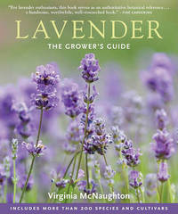 Lavender by Virginia McNaughton image
