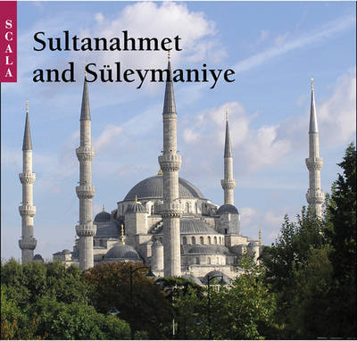 Sultanahmet and Suleymaniye by Tarkan Okcuoglu