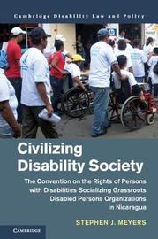 Cambridge Disability Law and Policy Series by Stephen J Meyers