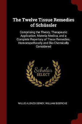 The Twelve Tissue Remedies of Schussler by Willis Alonzo Dewey image