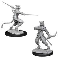 D&D Nolzur's Marvelous: Unpainted Miniatures - Male Tabaxi Rogue