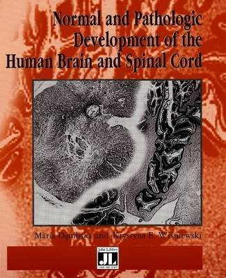 Normal and Pathologic Development of the Human Brain and Spinal Cord image