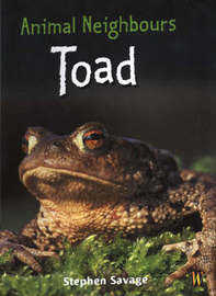 Toad by Stephen Savage image
