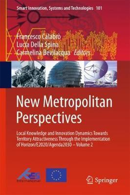 New Metropolitan Perspectives image