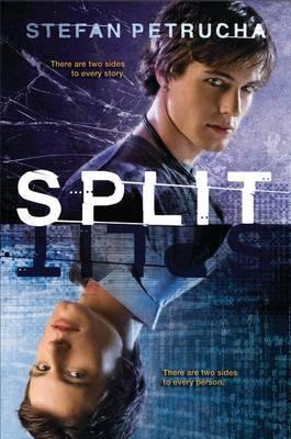 Split by Stefan Petrucha image