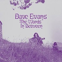 The Words In Between by Evans image
