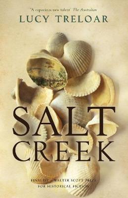 Salt Creek by Lucy Treloar image