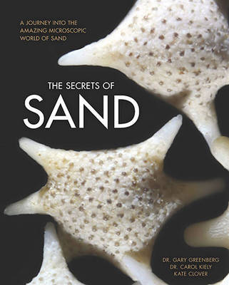 The Secrets of Sand by Gary Greenberg