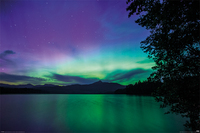 BBC Earth Maxi Poster - Northern Lights (936)