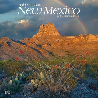 New Mexico Wild & Scenic 2019 Square by Inc Browntrout Publishers