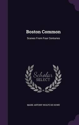 Boston Common by Mark Antony Wolfe De Howe image