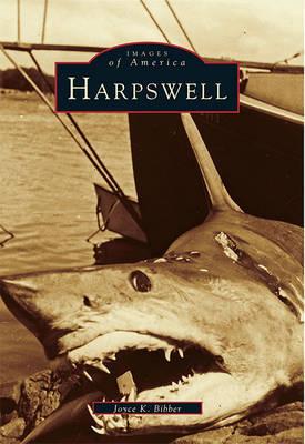 Harpswell by Joyce K Bibber image