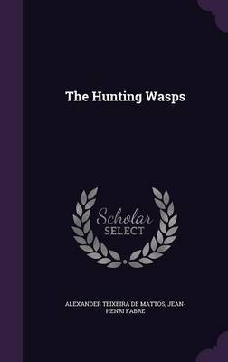 The Hunting Wasps by Alexander Teixeira De Mattos