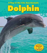 Dolphin by Louise A Spilsbury