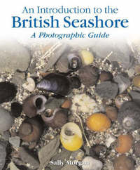 The British Seashore by Sally Morgan image