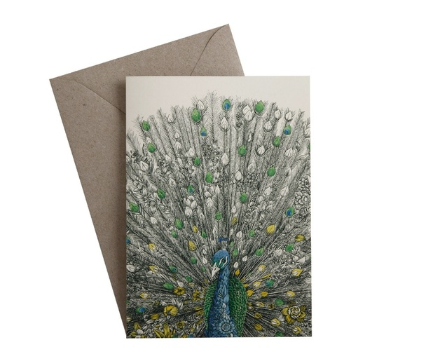 Maxwell & Williams: Marini Ferlazzo Birds Greeting Cards - Peacock