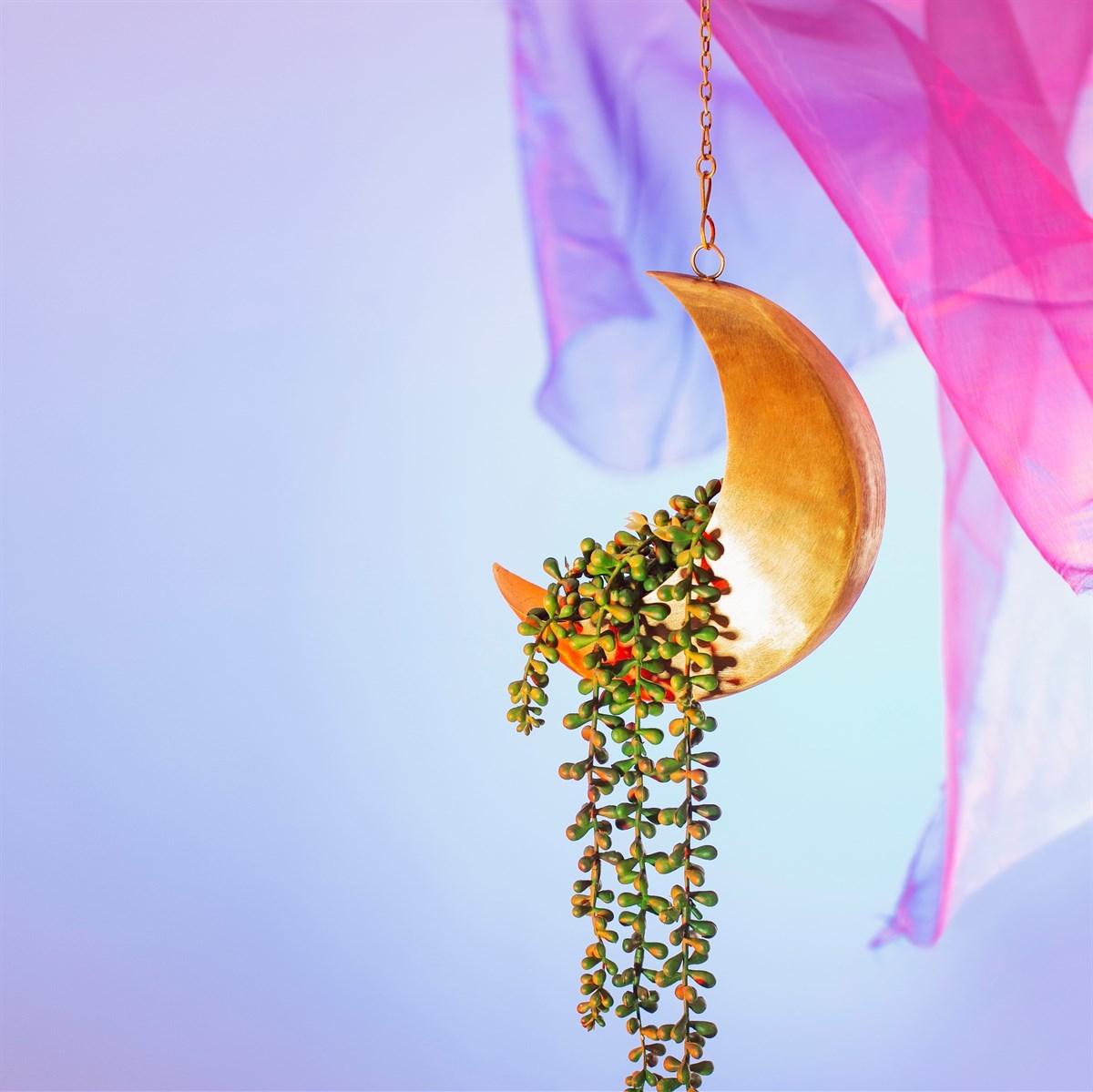 Sass & Belle: Celestial Moon Hanging Planter image