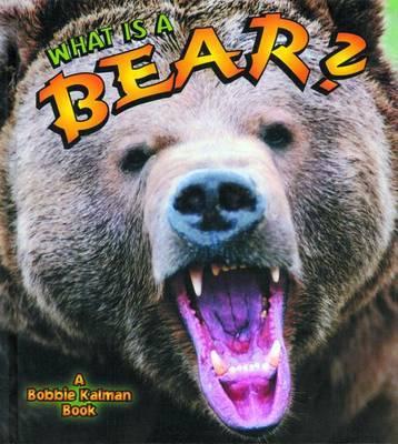 What is a Bear? by John Crossingham