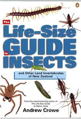 The Life-Size Guide to Insects and Other Land Invertebrates of New Zealand by Andrew Crowe image