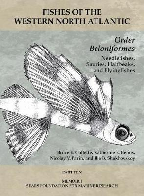 Order Beloniformes - Needlefishes, Sauries, Halfb - Part 10 by Thomas J Near