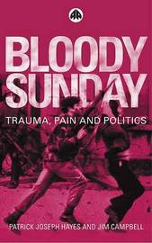 Bloody Sunday by Patrick Hayes image