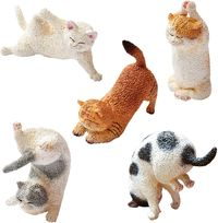 ANIMAL LIFE Baby Yoga Cat: Blind Box