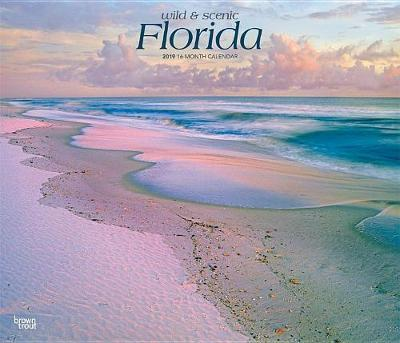Florida Wild & Scenic 2019 Deluxe by Inc Browntrout Publishers image