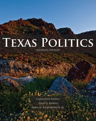 Texas Politics by James W. Riddlesperger