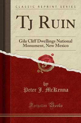 Tj Ruin by Peter J. McKenna image