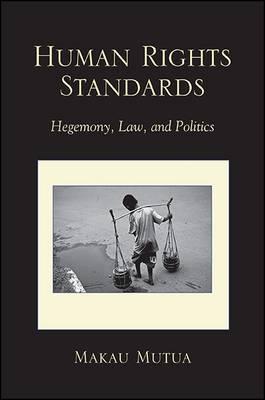 Human Rights Standards by Makau Mutua image