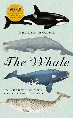 The Whale: In Search of the Giants of the Sea by Philip Hoare image