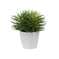 General Eclectic: Artificial Plant - Pine Needle Succulent image