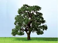 JTT: N Scale - Live Oak (3 Pack)