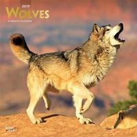 Wolves 2019 Square Wall Calendar by Inc Browntrout Publishers image