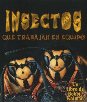Insectos Que Trabajan En Equipo (Insects That Work Together) by Bobbie Kalman image