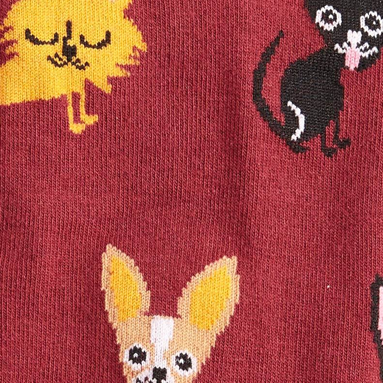 Women's - Chihuahua Knee High Socks image