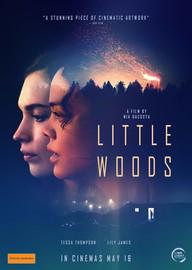 Little Woods on DVD