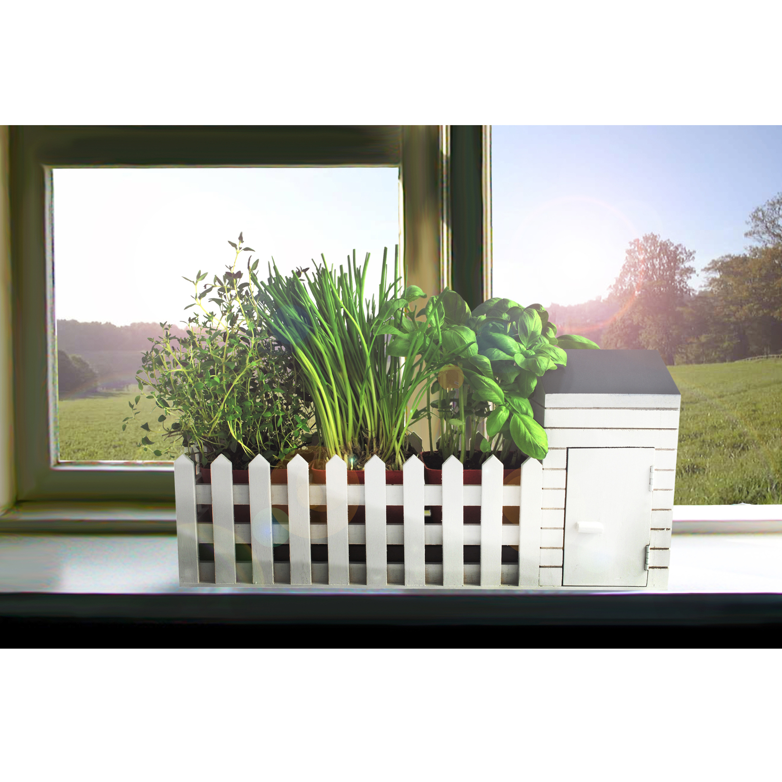 Indoor Allotment Gift Set image