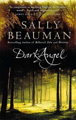 Dark Angel by Sally Beauman image