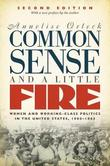 Common Sense and a Little Fire by Annelise Orleck